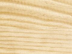 El Pino - Especie originaria de Francia o de Polonia - Vive la Madera
